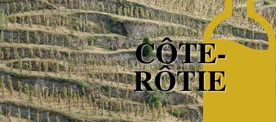 Le Côte-Rôtie : Le plus prestigieux vin rouge de Rhône nord