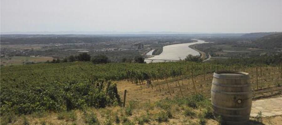 Les meilleurs domaines de la vallée du Rhône nord